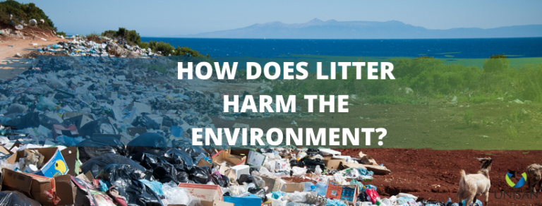 How does litter harm the environment