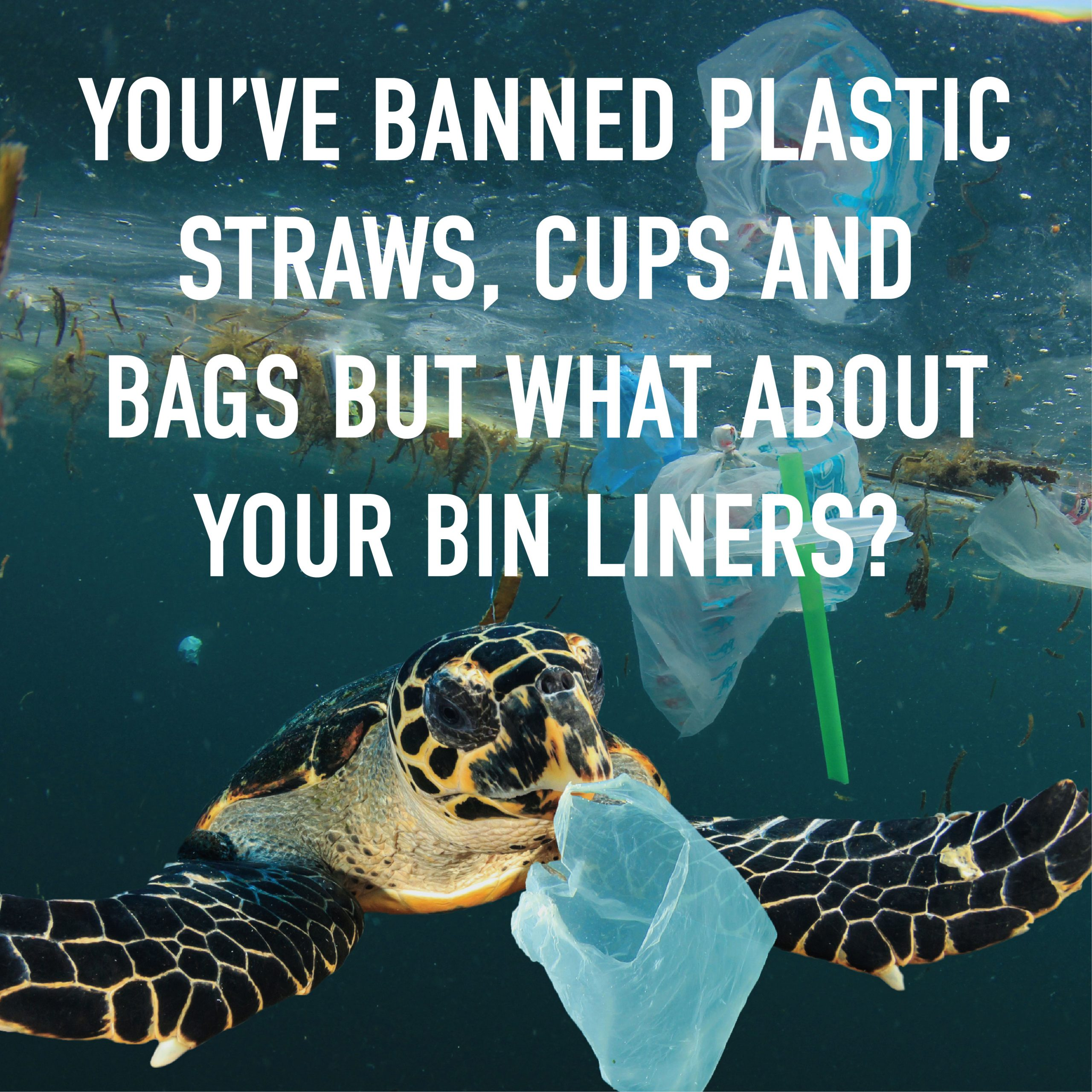 youve banned plastic straws cups and bags but what about bin liners