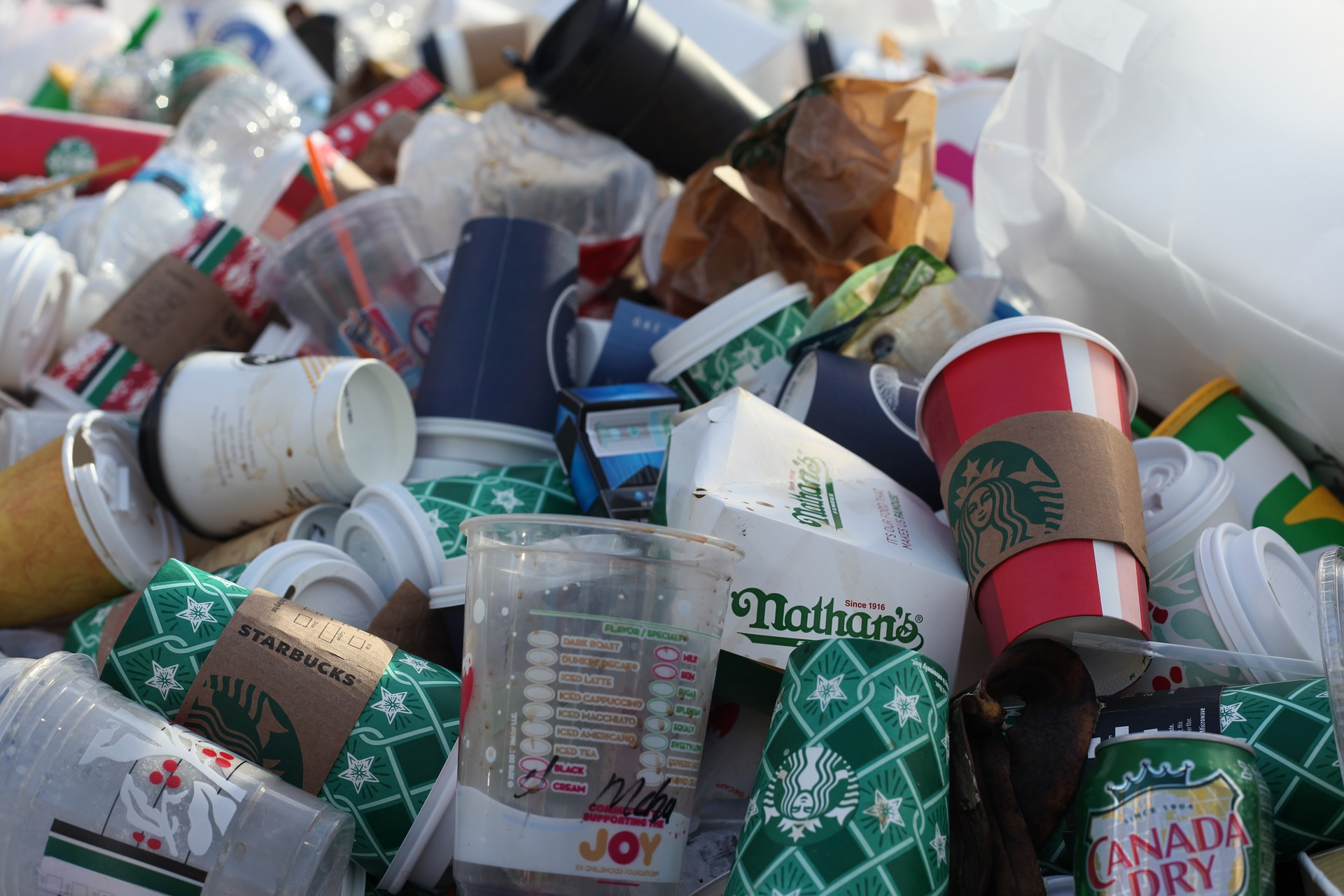littered single use coffee cups harming the environment